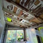 mold mitigation companies in south florida