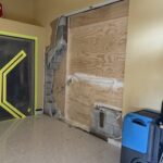 miami mold inspections and remediation