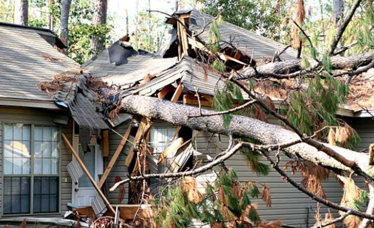 Hurricane Restoration Services